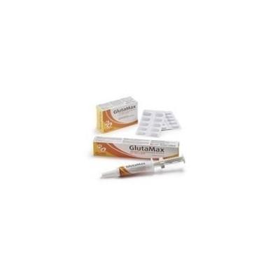 GlutaMax - Pasta-Siringa da 15 ml