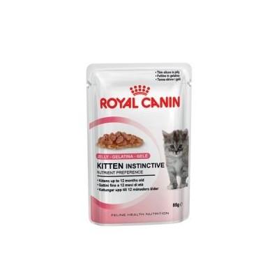 Royal Canin Feline Wet Kitten in jelly bustina 85gr