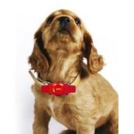 Collare GPS The Best Pet Tracker in BLU