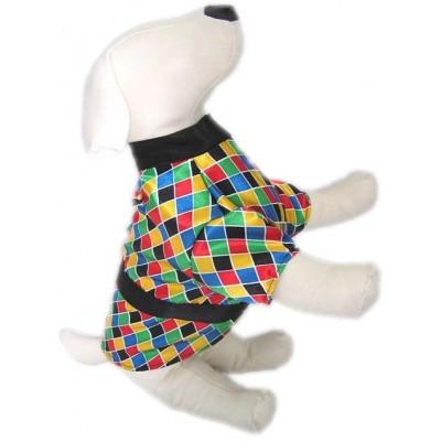 Arlecchino Costume per cani