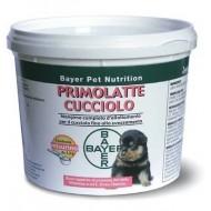 Bayer Primolatte cucciolo