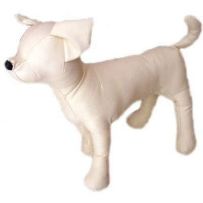 Manichino Chihuahua