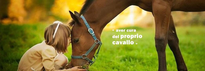 Negozio cavalli